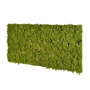 Panneau acoustique en mousse végétalisé 610x1220x70mm